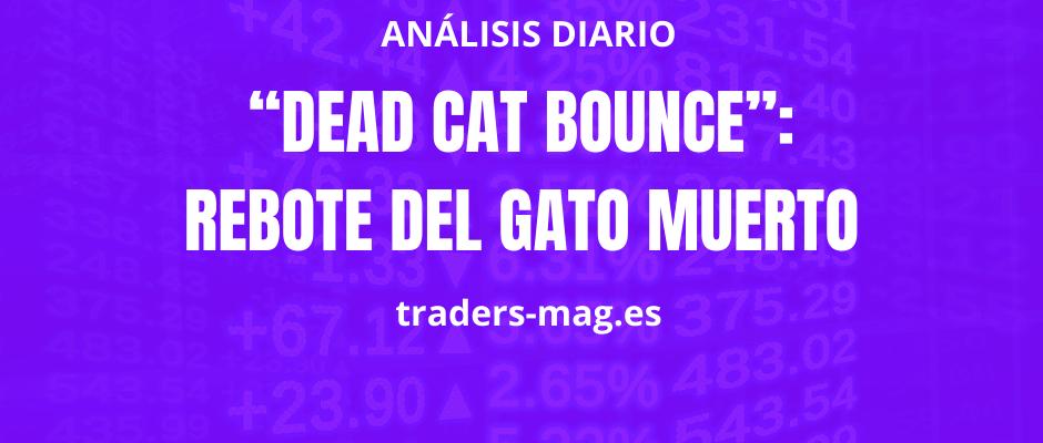 """""""Dead Cat Bounce"""": Rebote del Gato Muerto"""